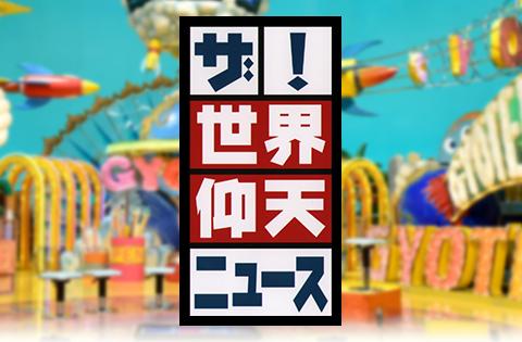 日本テレビ「ザ!世界仰天ニュース」